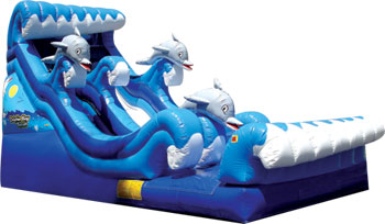 slide-wet-dolphin-bay-climber-wide-slide-rosie-37-x-16