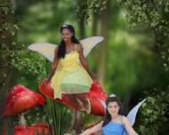 fairies-ivon