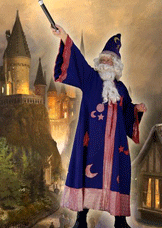 Wizard Pasedina CA